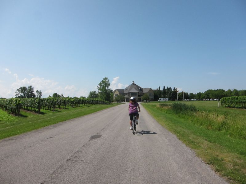 Approaching Peller Estates Winery